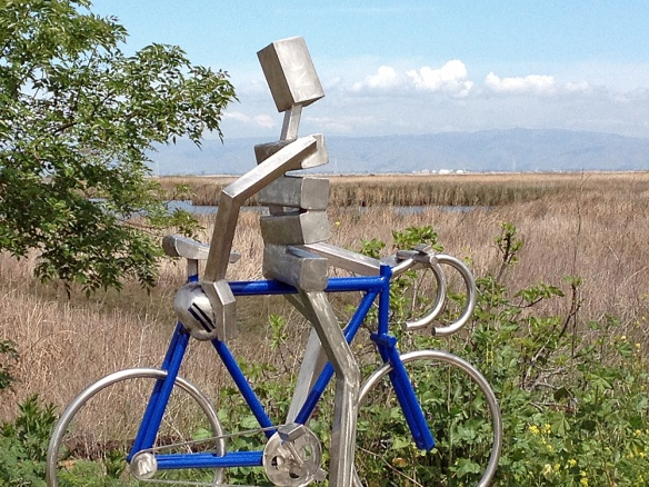 Looking Over the Palo Alto Baylands