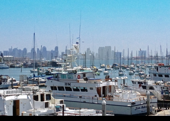 San Diego as seen from the deck of Pt. Loma Seafoods.