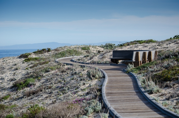 Boardwalk to Viewpoint, Asilomar State Beach, Pacific Grove CA