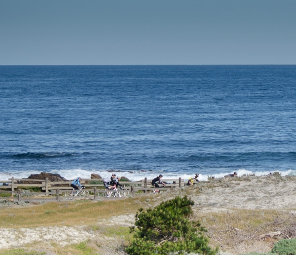 Biking through Asilomar State Beach, Pacific Grove CA