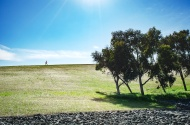 Byxbee Park, Palo Alto