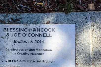 Brilliance, by Blessing Hancock and Joe O'Connell, 2014